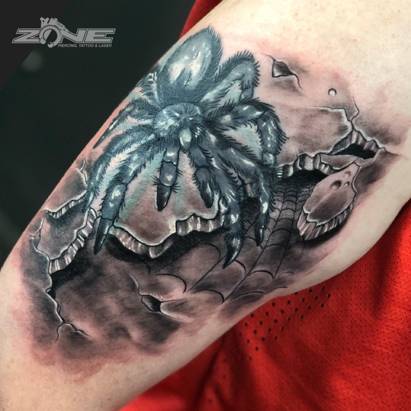 Zone -Tattoo -Dilo -Black and Grey -Spinne